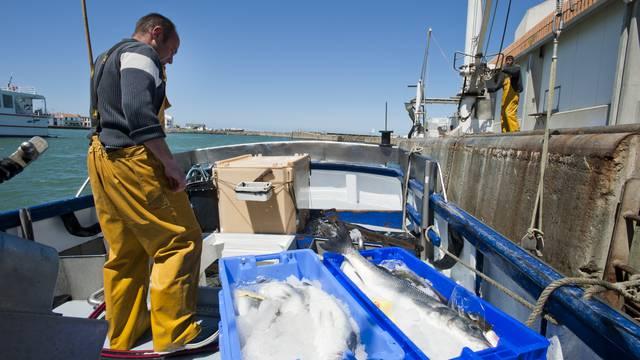 La pêche et l'agriculture