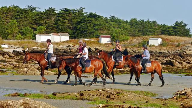 Equitation, Centre équestre les Violettes à l'Ile d'Yeu