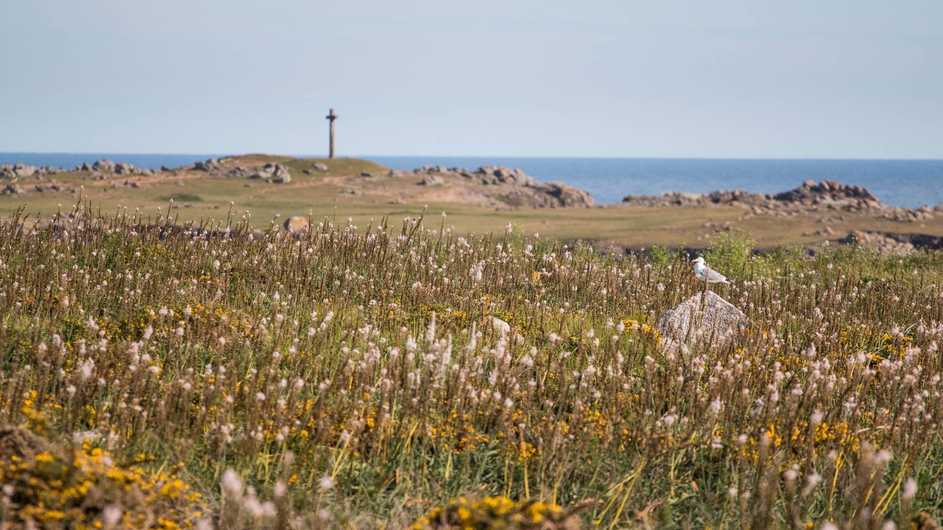 Pointe du Châtelet L'île d'Yeu © R. Laurent - OT île d'Yeu