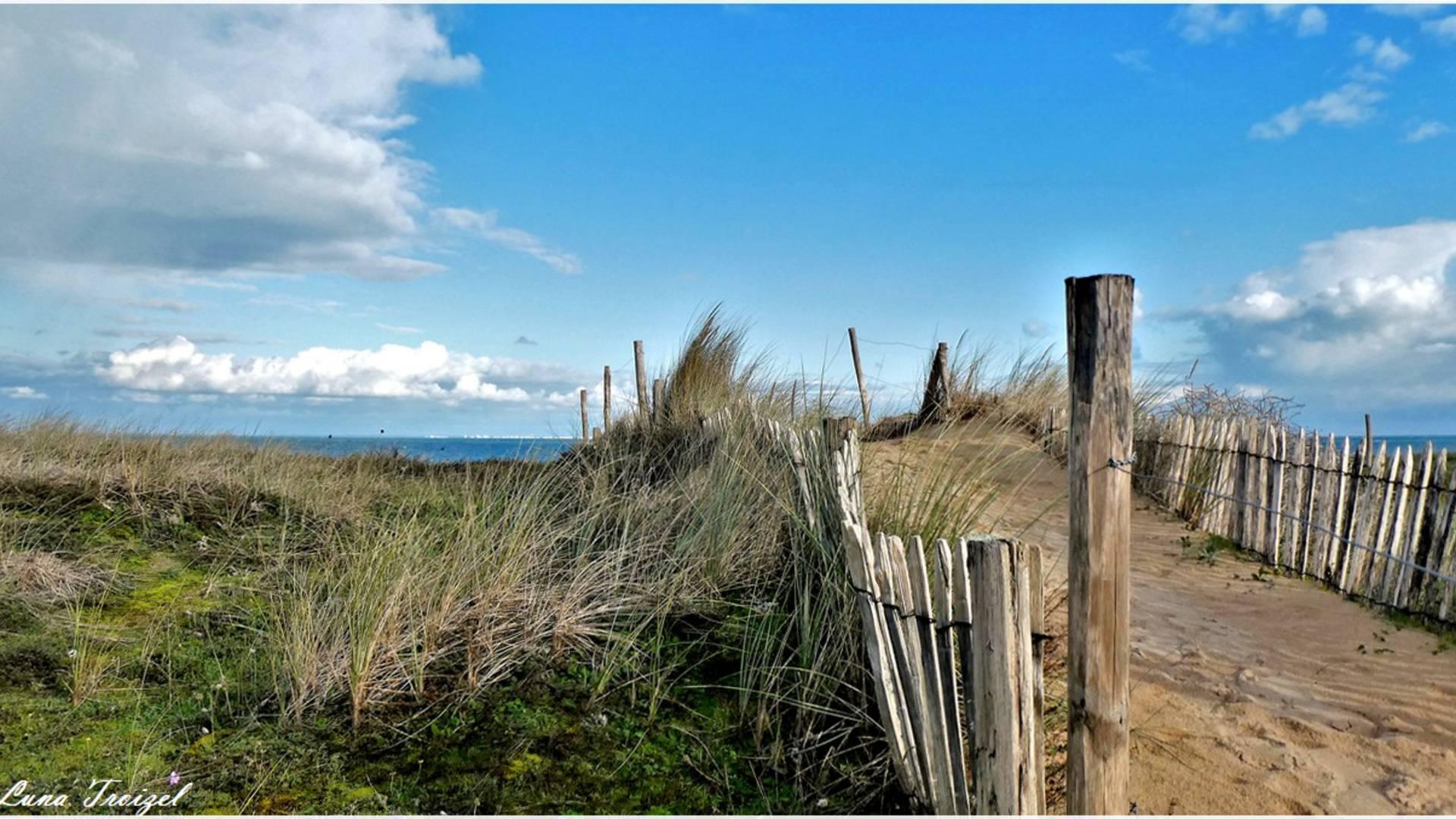Les dunes et plage à l'île d'Yeu ©Luna Troizel