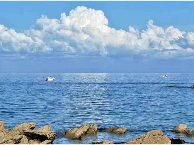 Cap sur L'île d'Yeu