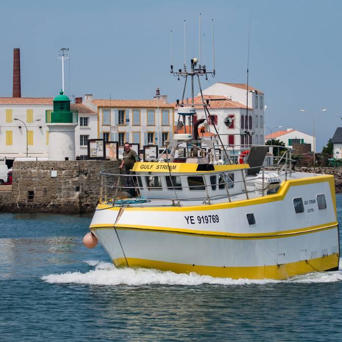 Port de pêche, Port-Joinville, Ile d'Yeu