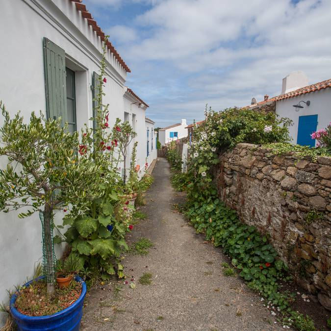 rues de Saint Sauveur, Ile d'Yeu